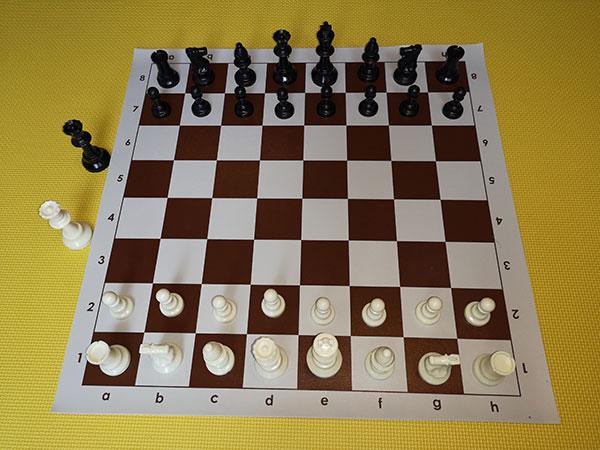 Chess set - brown